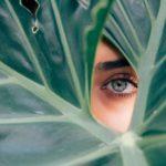 lash tint leaf